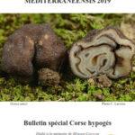 CEMM: Bollettino Speciale Corsica 2019 sugli ipogei